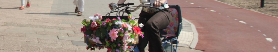 gezonde fietser