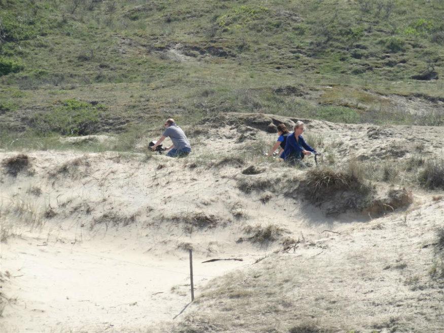 fietsers in duinen