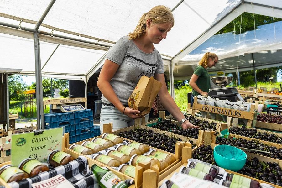 Kersenboomgaard in Hekendorp: volop keuze.