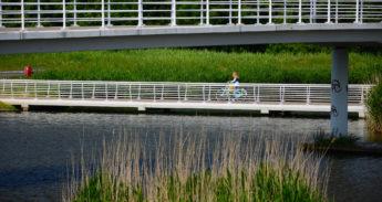 Fietsen in Almere