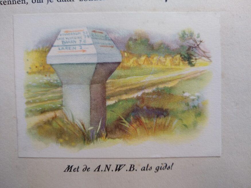 paddenstoel, met tent en rugzak
