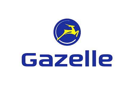 fietsstad_gazelle_450_300