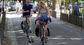 Klein hondje loopt aan flexlijn naast de fiets