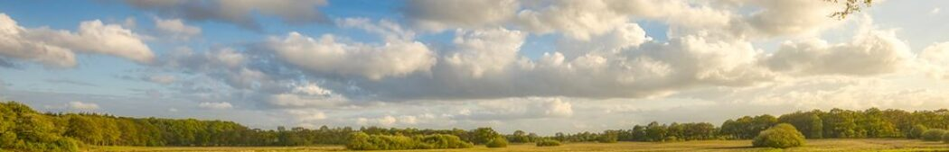 Natuur-Omgeving-Drenthe-Groningen