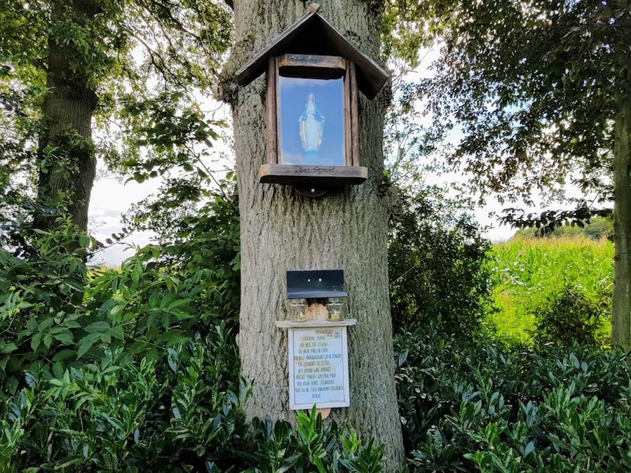 altaar voor Maria aan een boom