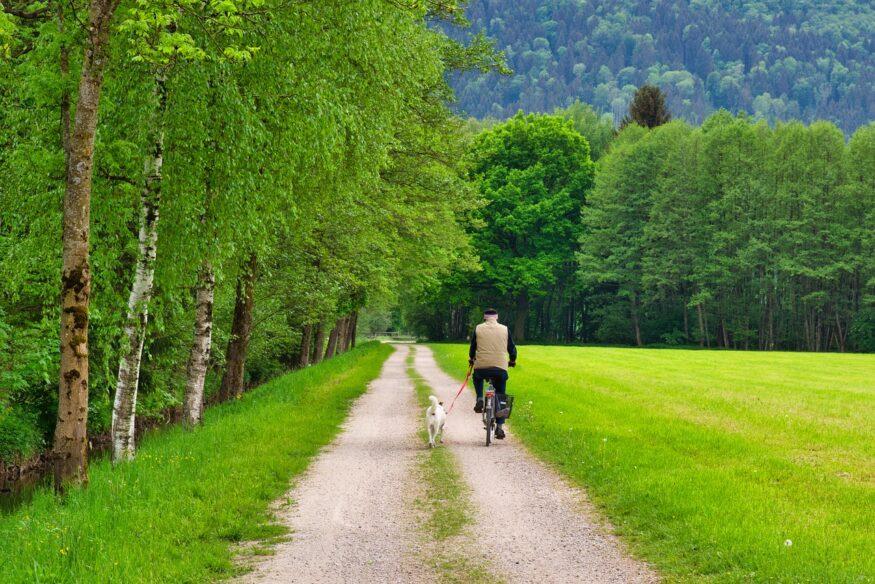 cyclists-5162740_1280