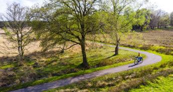 Fietspad langs bomen en heide