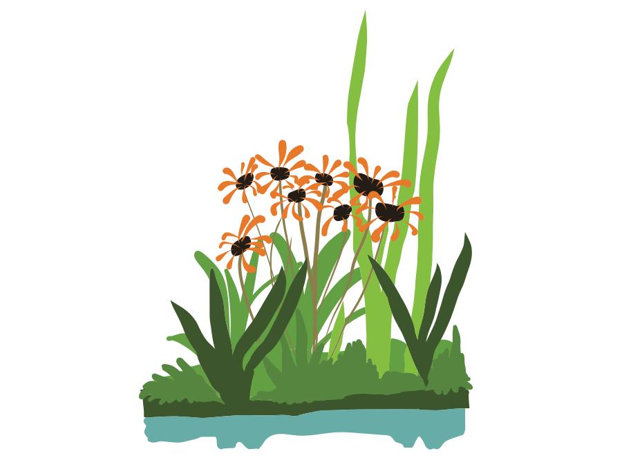 Drijfoever met bloemen en grassen