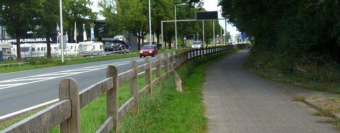 Hekken langs de van Rechteren Limpurgsingel