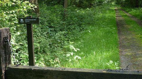 Landgoed Twickel, doodlopende weg