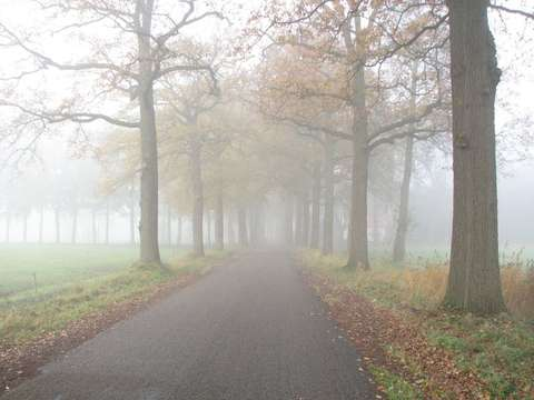 Mist op de oude Wierdensestraat