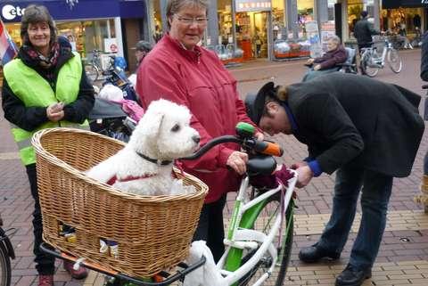 fietsenmaker repareert achterlicht van dame met hond in mandje voorap