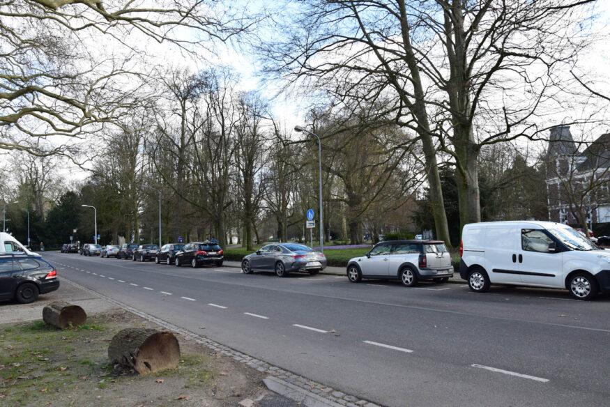 Sint Hubertuslaan (3 klein)