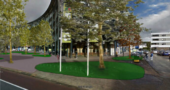 IMG_2116-montage-bomen-site