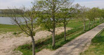 Biesbosch Hevel