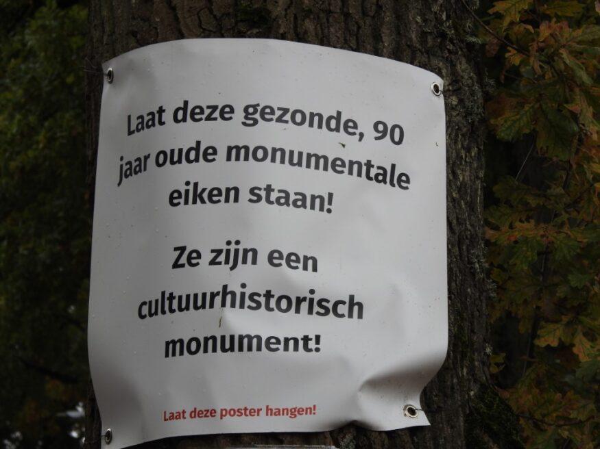 hoofdweg eelde, poster bomen