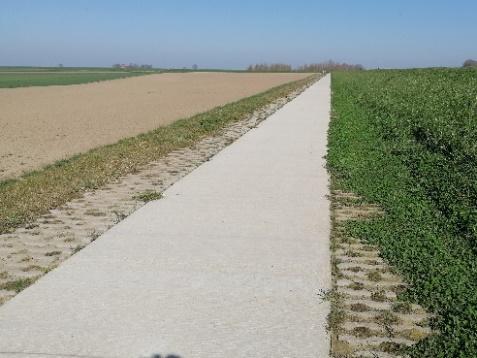 Foto 13: vergevingsgezinde randen langs betonnen fietspad (Westerwoldse Aa)