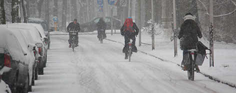 Foto: stoere fietsers trotseren de kou