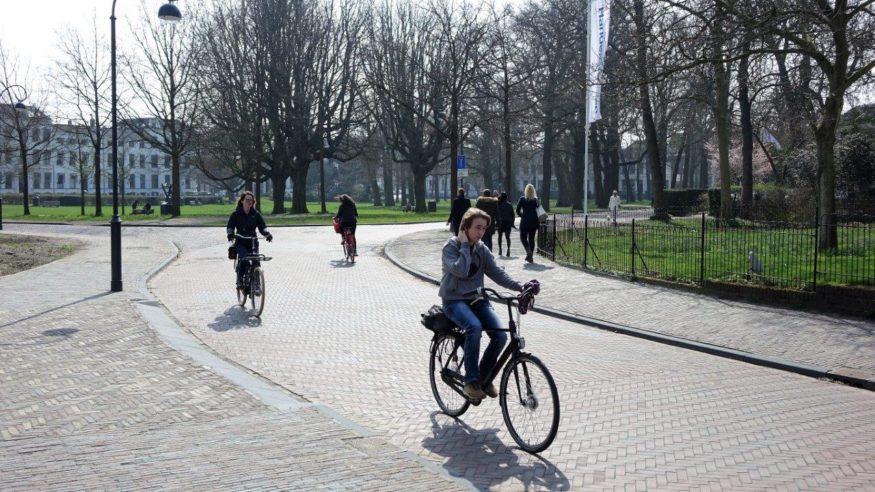 Kenaupark-met-afsluiting-april-2018