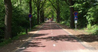 Molenwijkseweg-Fietsstraat3
