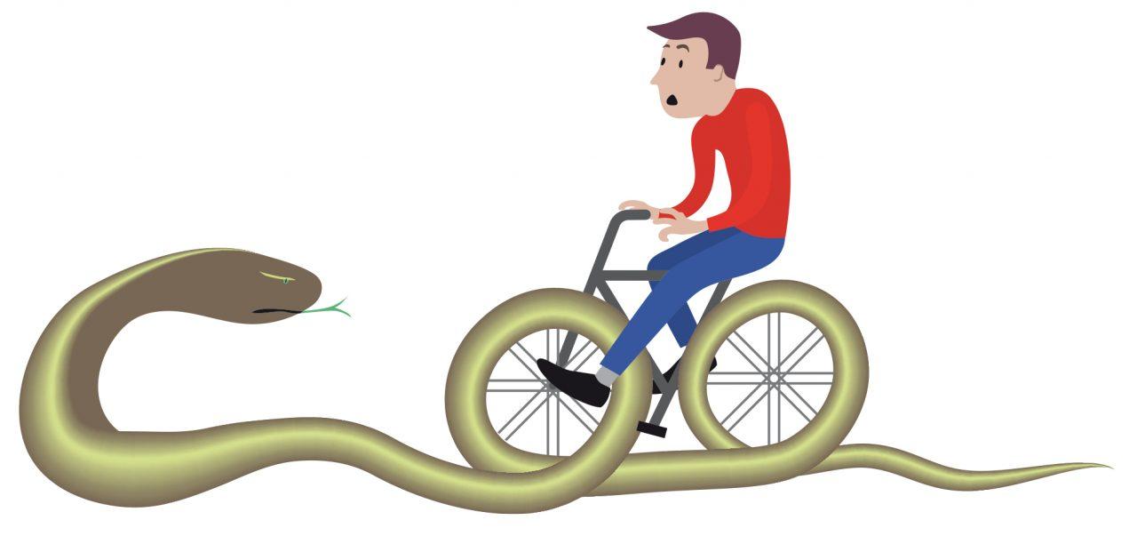 Fietsen over pissige hazelworm