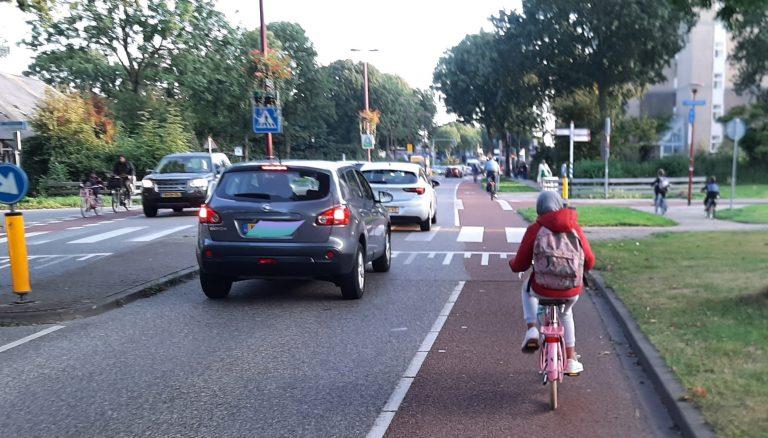 Jonge fietser op de Batauweg
